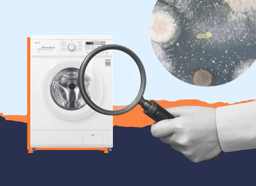 На ободке стиральной машины появилась черная грязь. Это плесень?